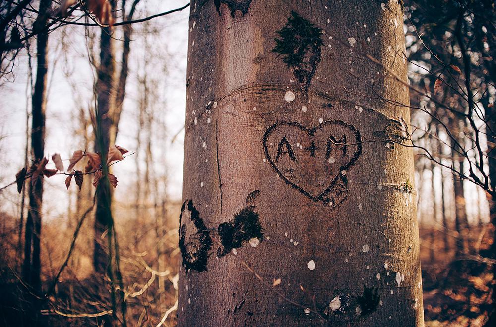 Valentinstag Herz
